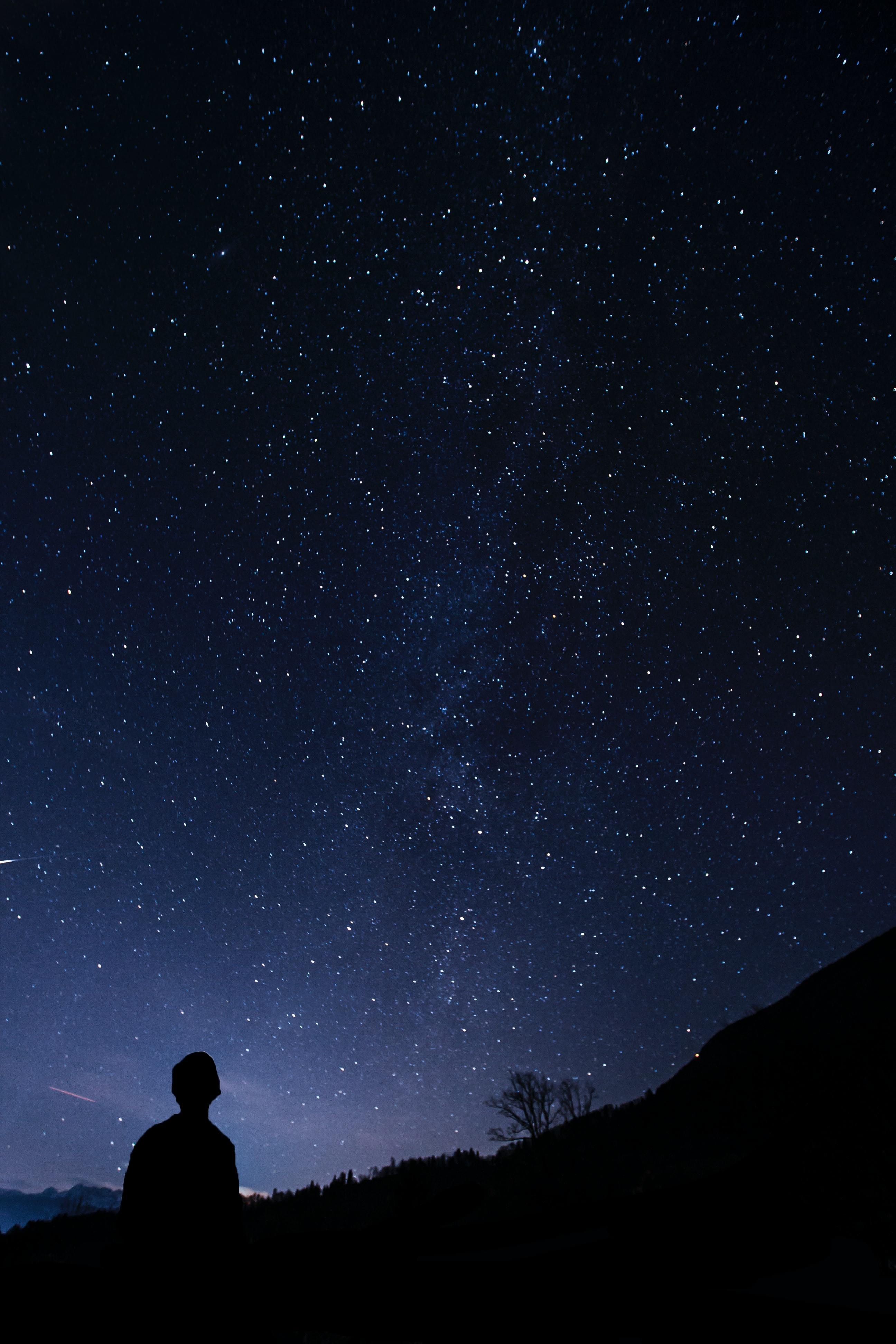 A starlight sky reveals only the silhoutte of a person looking up at the night sky